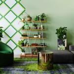 植物インテリア-室内で育てやすい観葉植物10種類&部屋別実例46選