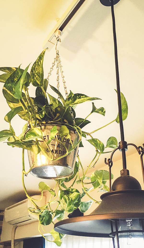 vintage-hanging-planter