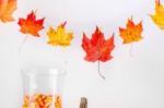 ほっこり暖かい!厳選27実例付 秋のインテリアを真似してみよう